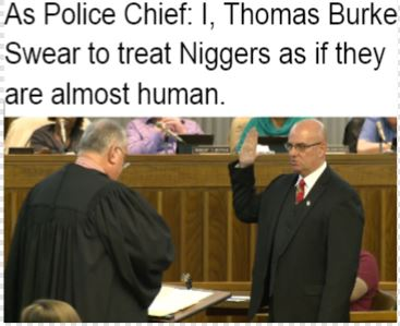 niggers read